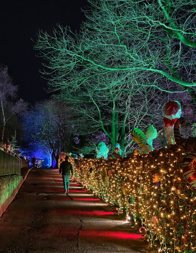 Edinburgh staycation, Edinburgh Zoo's Christmas Nights