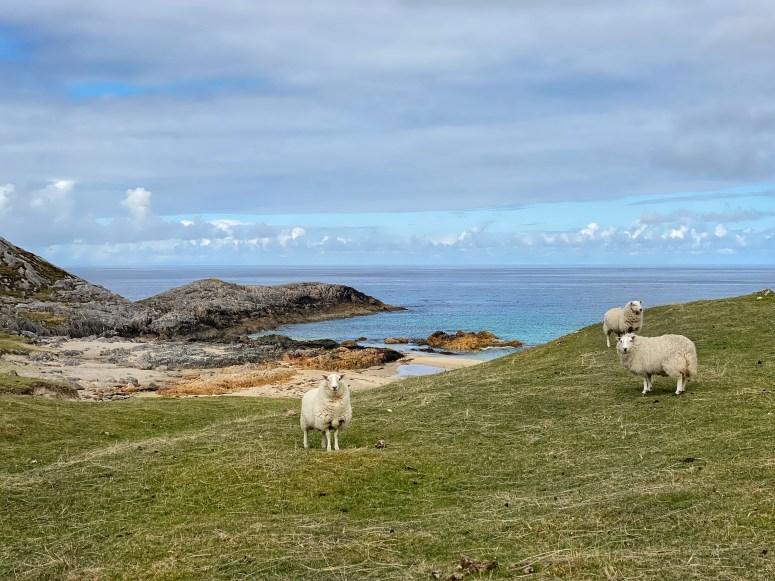 Clabhach beach, Isle of Coll