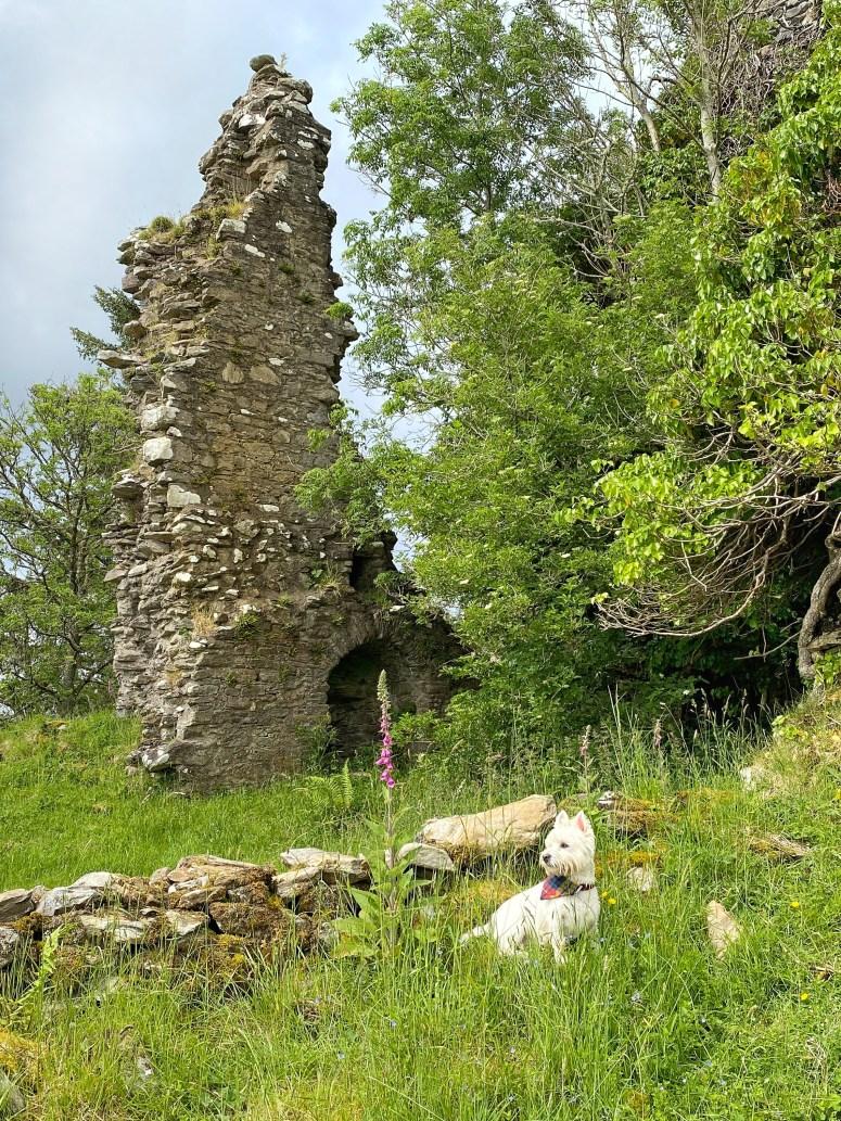 Exploring Argyll, Scottish travel blog