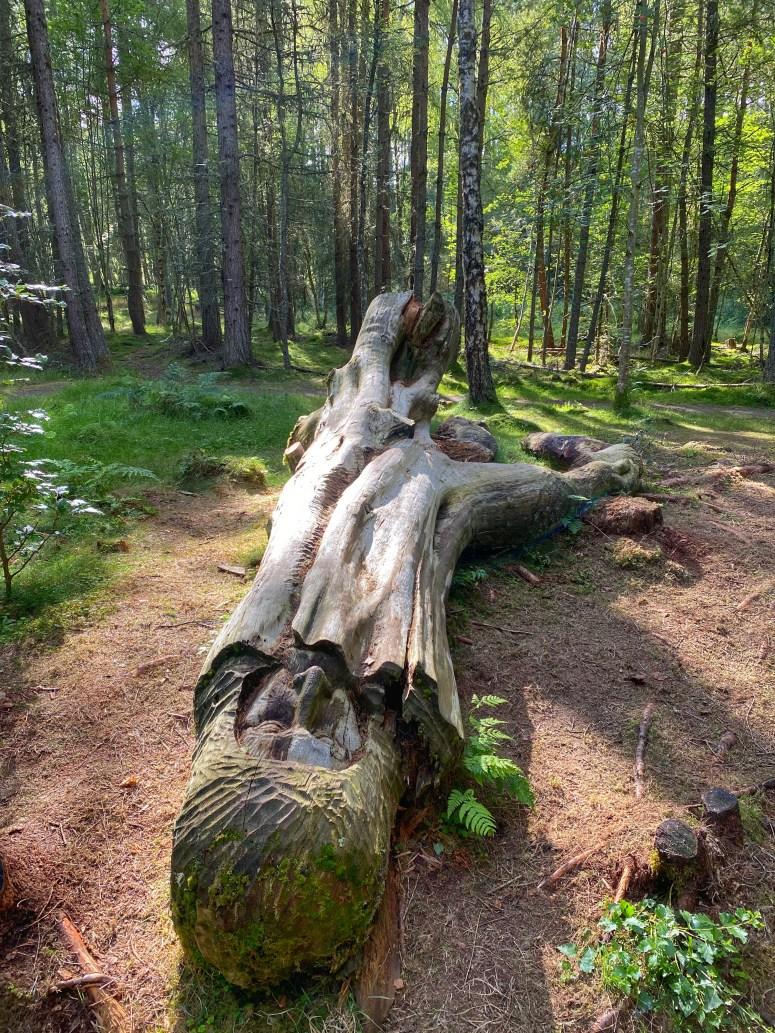 Frank Bruce Sculpture Trail Feshiebridge