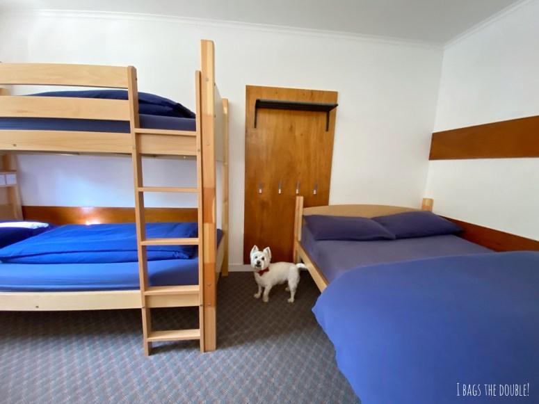 Dog friendly accommodation Scotland