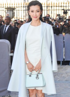 Li Bingbing, handbag from Dior.