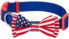 flag-bow-collar