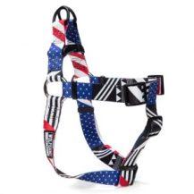pledge-harness