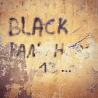 Black Panthers Grafitti in Fes.