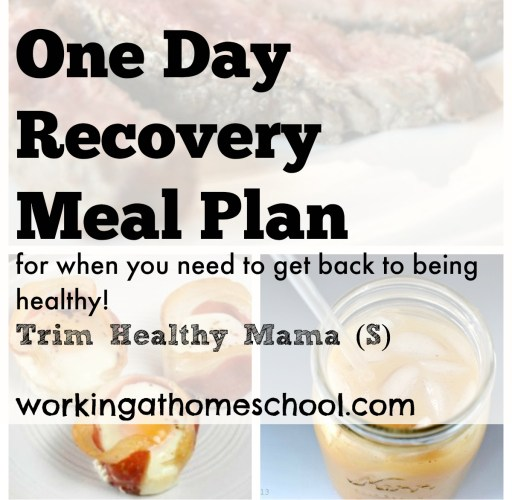 Cheating Recovery Meal Plan