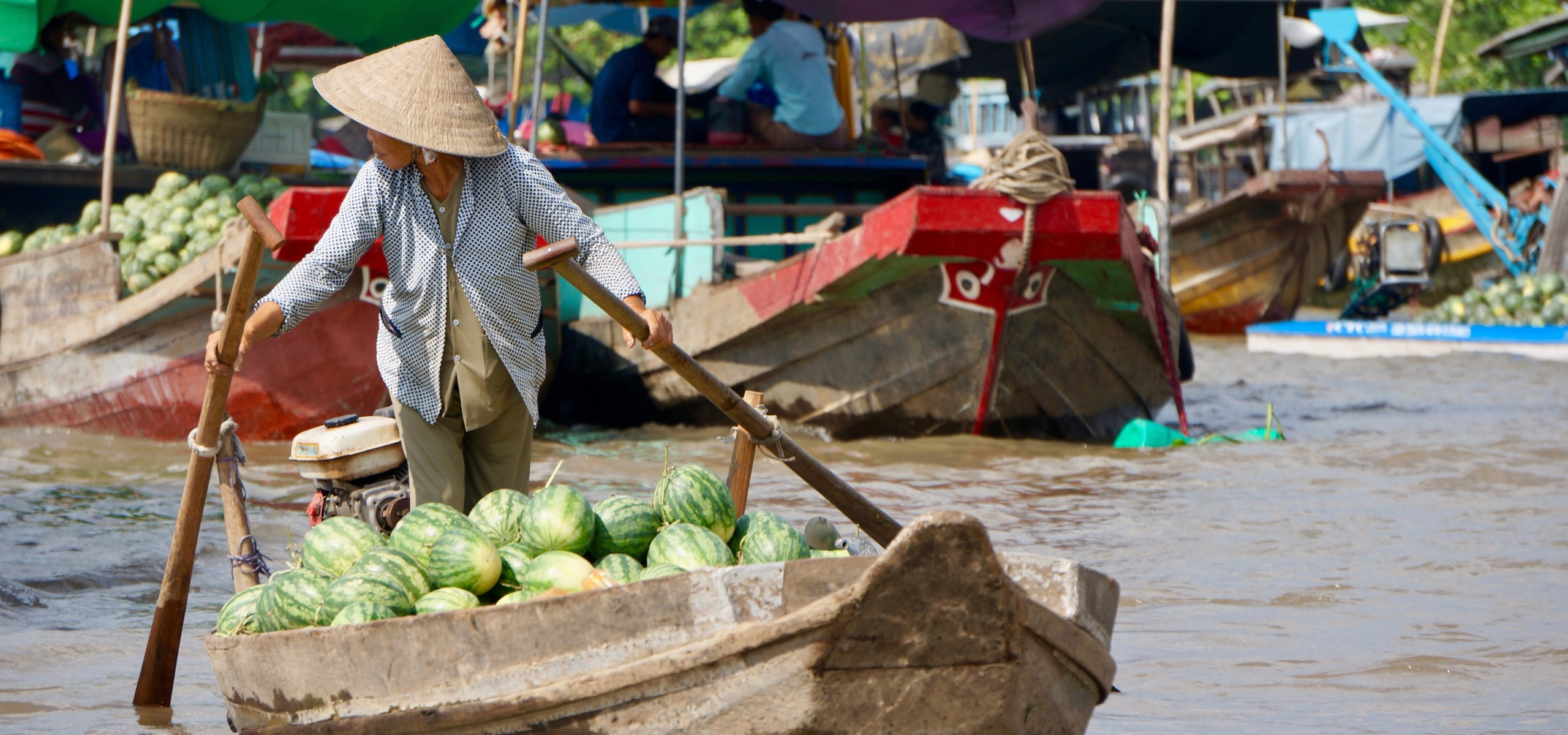 thewelltravelledman mekong delta two days from ho chi minh city