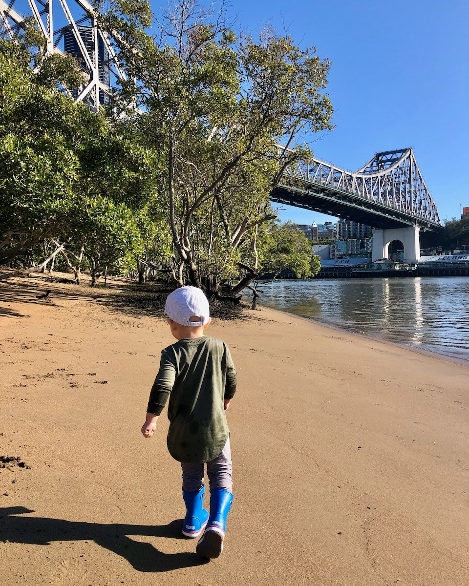 thewelltravelledfamily kangaroo point Brisbane inner-city dog-friendly beach