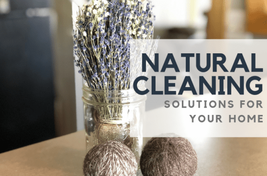 Natural Cleaning Solutions For Your Home | The We Spot