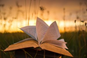 Read more about the article Summer Reading Book Club Ideas for Women From The We Spot