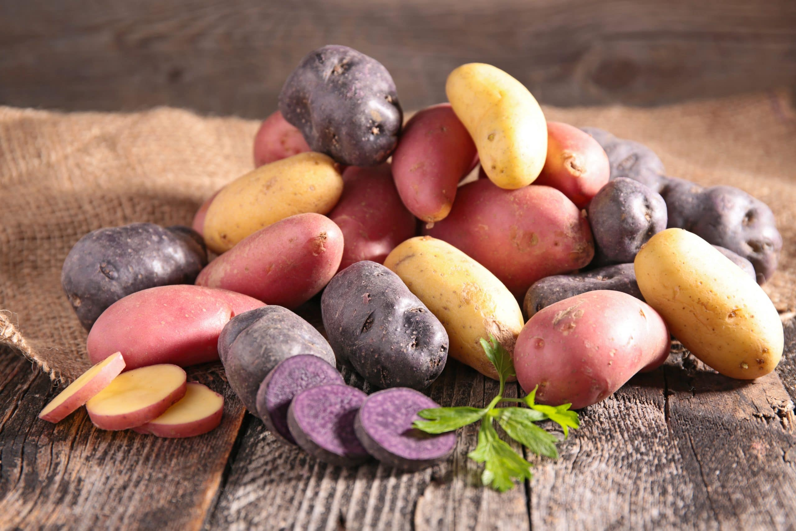 Read more about the article Embarking on Growth: Purple Sweet Potatoes Brought Me Closer to My Grandfather