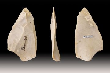 Stone Age tools discovery reveals early man innovations