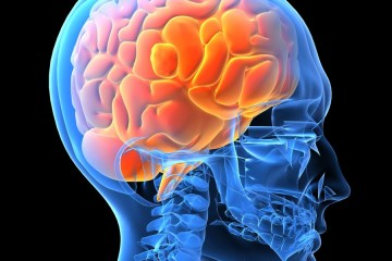Poliovirus could be the new treatment for brain cancer