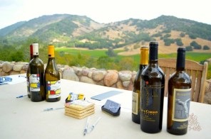 The Whet Palette Napa Valley Wine Country Itineraries-9
