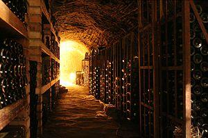 English: Wine cellar in Chvalovice near Znojmo.