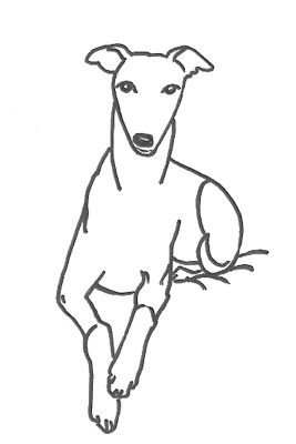 Whippet Coloring Pages