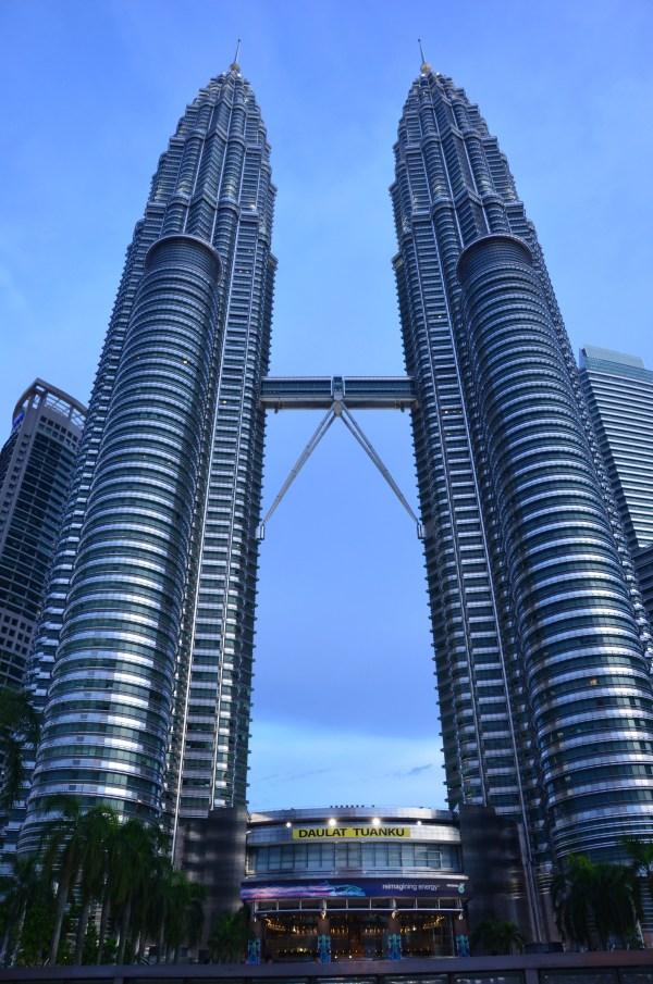 Petronas Twin Towers Whirling Wren