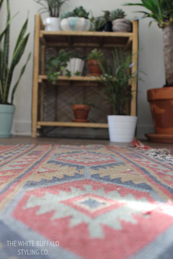how-to-create-an-indoor-garden