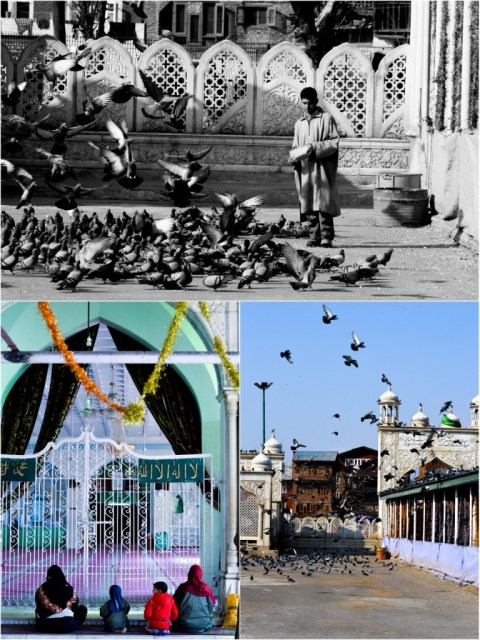 Sri Nagar, Kashmir