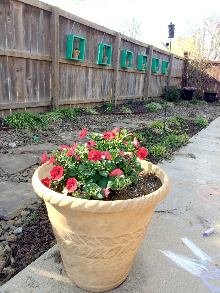 Flower Shadow Boxes for the Fence