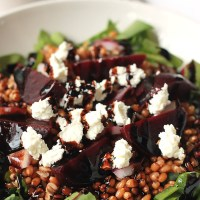 Wheat Berry Beet Salad