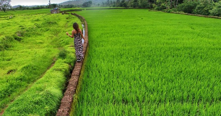 Rediscovering Goa in Monsoon: Places to see in Goa