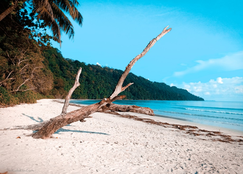 Havelock Island Best beaches in Andaman