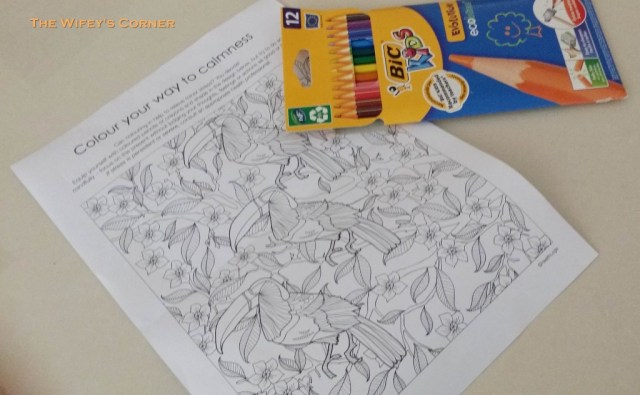 adult coloring2