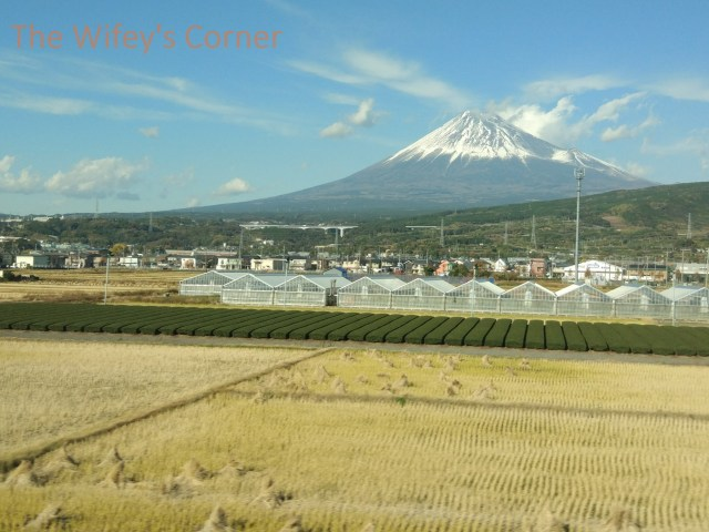 Mount Fuji viewed from the train to Tokyo