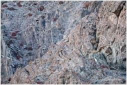 Ladakh 8