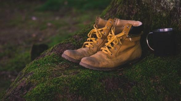 shoes-1638873_1920 (1)