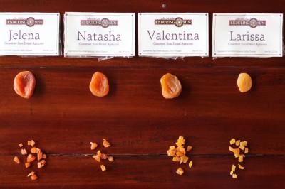 apricot samples