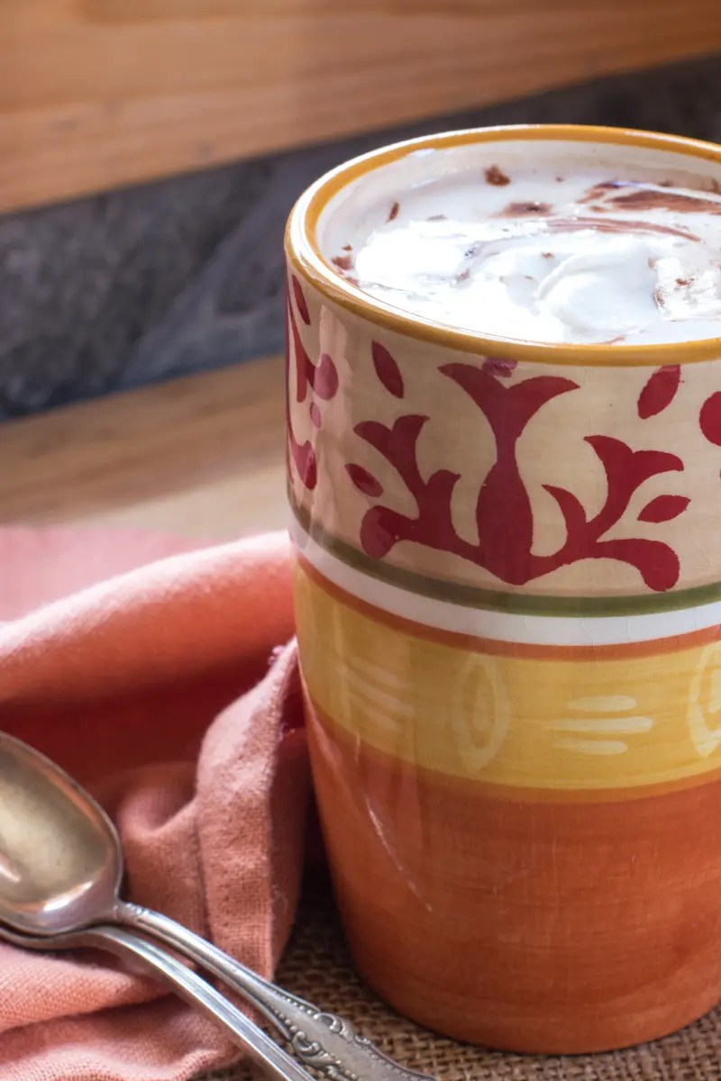 Hot Cocoa and Baileys with Coconut Whipped Cream (Dairy-Free)