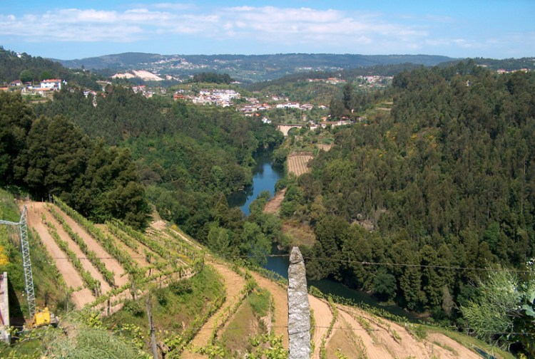 Vinho Verde wines come from Portugal's achingly beautiful, pastoral north