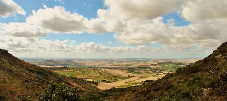 African vistas and innovative wines in The Swartland