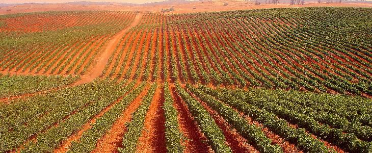 The Alentejo is vast with beautiful rolling agricultural land in the south and mountains in the north
