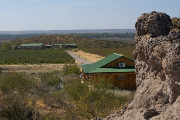Bodega Noemia vineyard in the the rugged Rio Negro region of Patagonia
