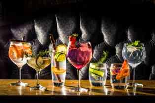 Gin & Tonic 5