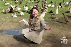 Vergenoegd-the-wine-girl-cape-town-with-ducks