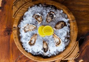 Chinchilla Oysters