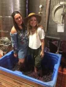 Lanzerac harvest wine girl stomping grapes