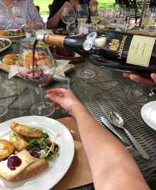 Lanzerac harvest wine time