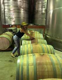 zandvliet wine girl in cellar