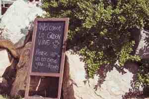 Silvermist Organic Wine Estate Green Vine Eatery Constantia