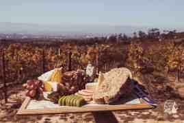 Silvermist Organic Wine Estate Green Vine Eatery Constantia Platter views