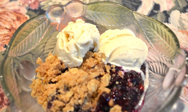 Blueberry Crumble with Cinnamon Ice Cream