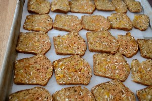 apricot-almond-gourmet-crackers-on-baking-sheet