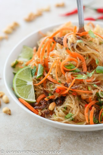 Picnic Thai Glass Noodle Salad