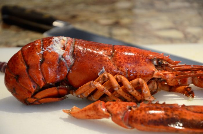 Whole lobster with leg removed
