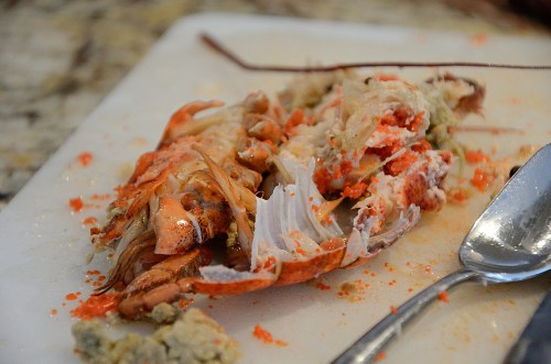 Lobster carcass, meat removed